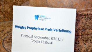 Wrigley Prophylaxe Preis 2014