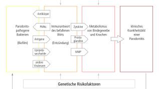 Mundgesundheit und Allgemeinerkrankungen