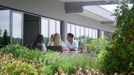 Dürr Dental – Unser Dachgarten eine grüne Oase